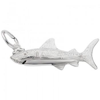 https://www.sachsjewelers.com/upload/product/1517-silver-shark-RC.jpg