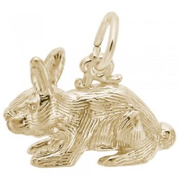 https://www.sachsjewelers.com/upload/product/2264-Gold-Rabbit-RC.jpg
