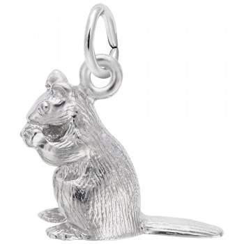 https://www.sachsjewelers.com/upload/product/2389-Silver-Chipmunk-RC.jpg