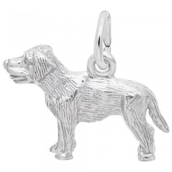 https://www.sachsjewelers.com/upload/product/2404-Silver-Labrador-RC.jpg