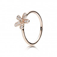 Pandora Ring  Style# 180932CZ
