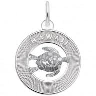 HAWAII W/TURTLE