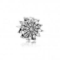 Pandora Charm  Style# 791764CZ