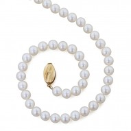 "14K 6+MM White Freshwater Cultured Pearl 20"" Necklace"