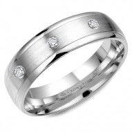 CrownRing white gold wedding band with brushed center and eight round diamonds.